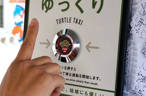 Turtle-Taxi-1