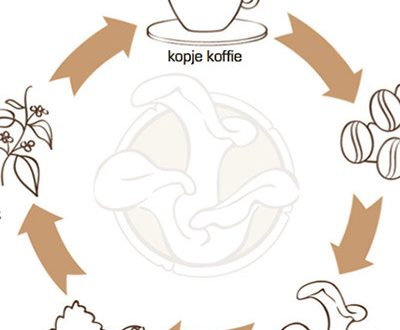 rotterzwam_koffie_compost_paddenstoel_recycling-e1427203835454